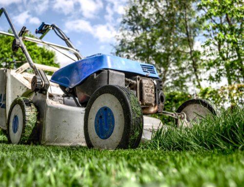 Ventajas de contratar una empresa de jardinería para el mantenimiento de jardines de una comunidad de propietarios